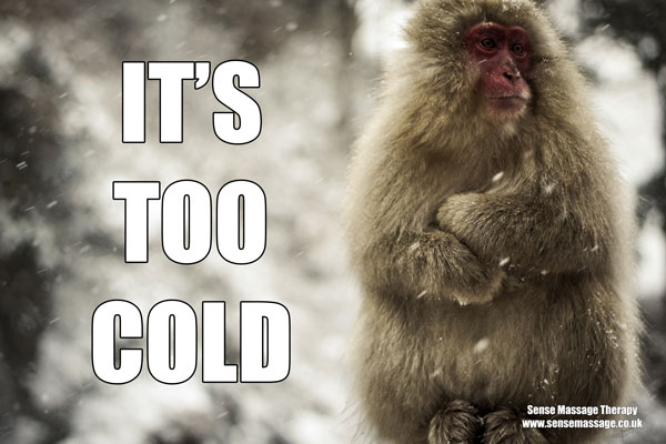 It's too cold meme